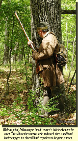 A British ranger peers from behind a large oak tree.