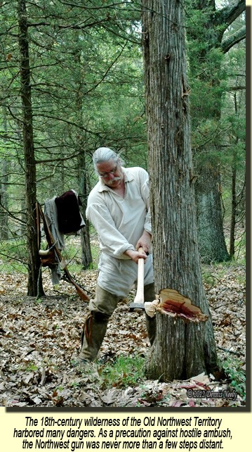 A traditional woodsman knotches a cedar tree with an 18th century ax.